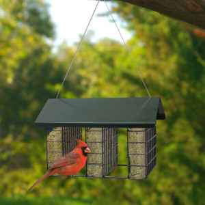 Tiered to Triple Suet Feeder