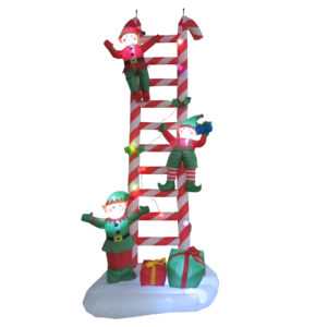 Elves on Ladder